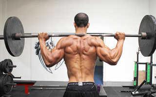 Упражнения для фитнес зала для мужчин