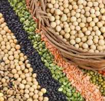 Белки в растительных продуктах питания таблица
