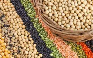 Растительные источники белка таблица