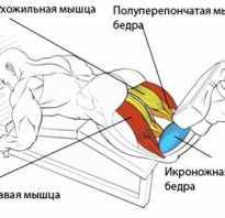 Сгибания ног лежа в тренажере