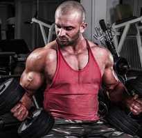 Схема упражнений с гантелями для мужчин