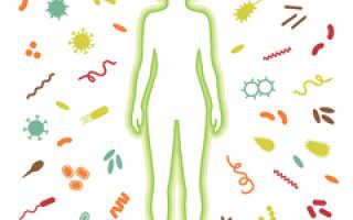 Как правильно очистить организм