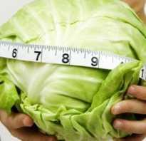 Шутабс таблетки для похудения отзывы врачей
