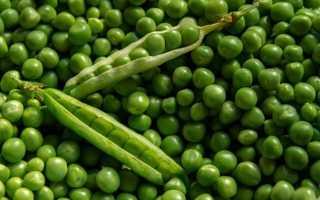 Можно ли есть зеленый горошек на диете