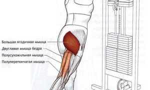Кроссовер тренажер упражнения для ног