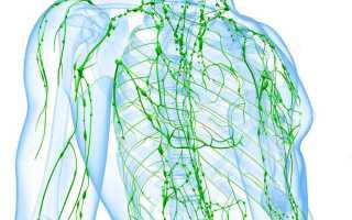Лимфодренажный массаж живота отзывы