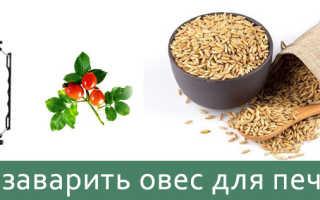 Рецепт отвара из овса для лечения печени