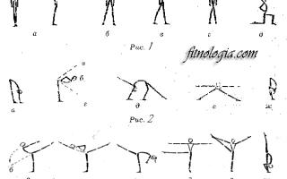 Основная стойка в гимнастике