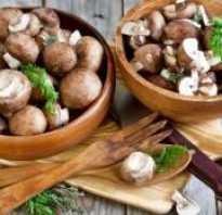 Сколько витаминов в грибах